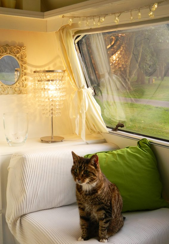 Fris groen caravanity happy campers lifestyle for Bright green interiors