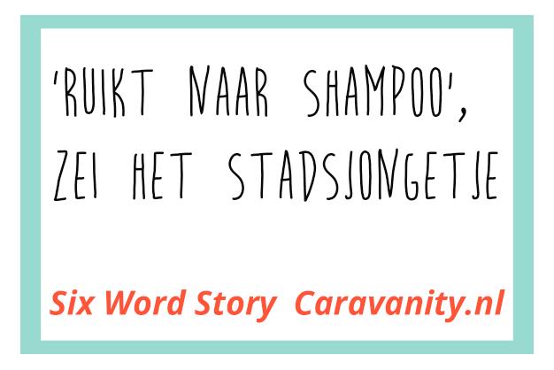 Caravanity Six word story